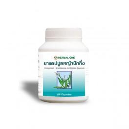https://www.chinesemedicine-th.com/158-thickbox_default/compound-murdannia-loriformis-100-capsules.jpg
